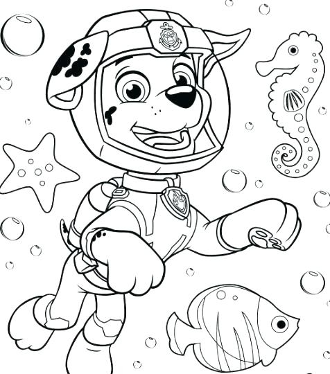 Marshall Paw Patrol Coloring Page At Getdrawings Com Free For
