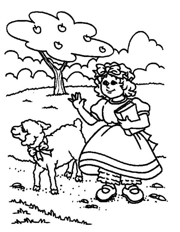 600x772 Drawing Mary Had A Little Lamb Coloring Pages Color Luna