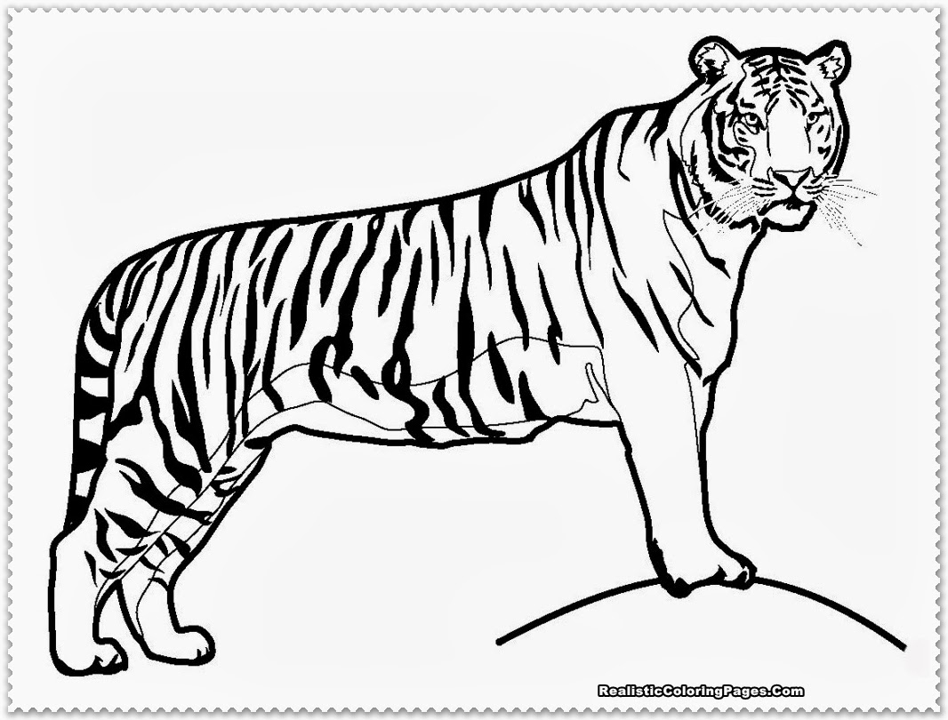 The Best Free Masha Coloring Page Images Download From 80