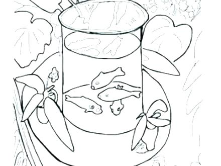 440x330 Matisse Colouring Pages Goldfish Henri Matisse Coloring Pages