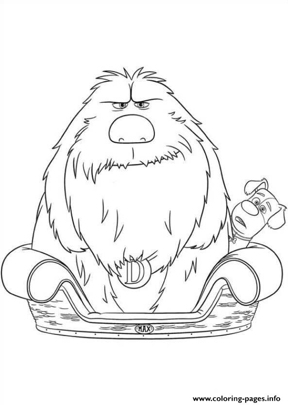 593x832 Duke In Max Bed Secret Life Of Pets Coloring Pages Printable