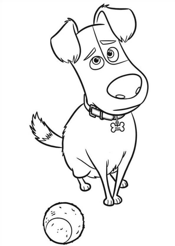 593x832 Kids N Coloring Pages Of Secret Life Of Pets