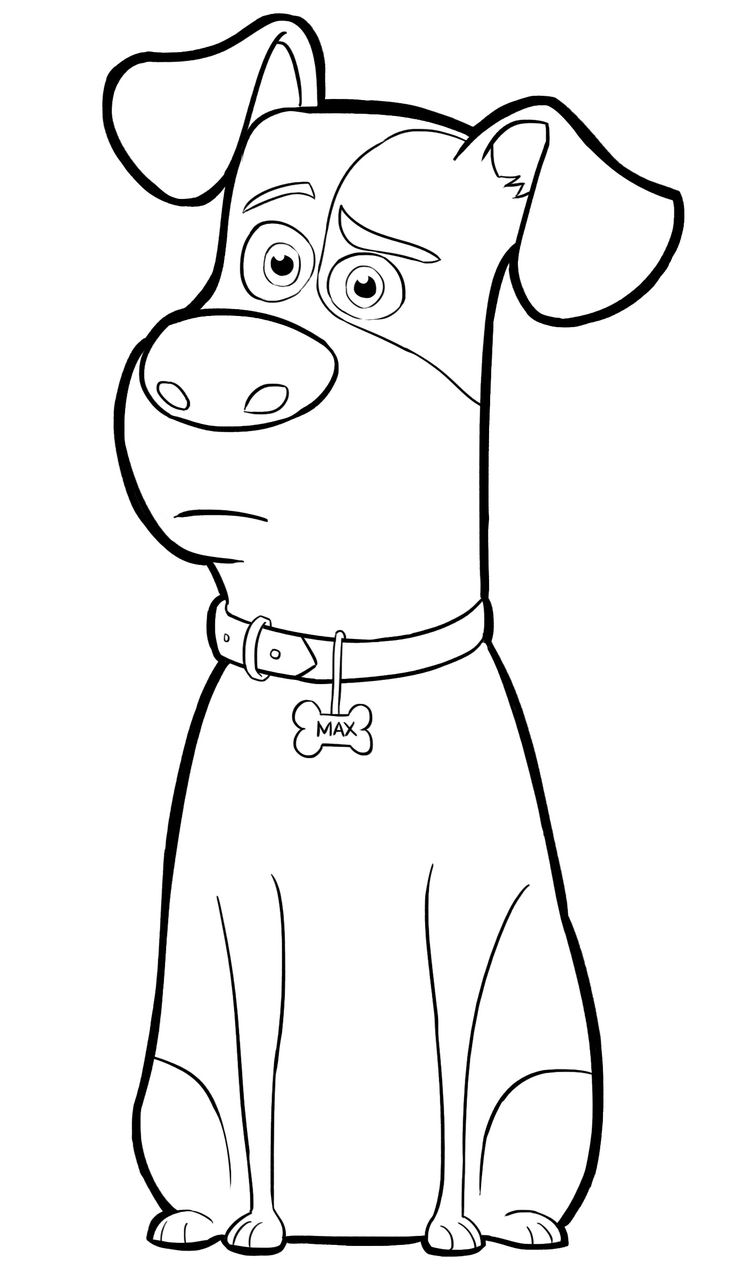 736x1280 Secret Life Of Pets Coloring Pages Download Coloring For Kids