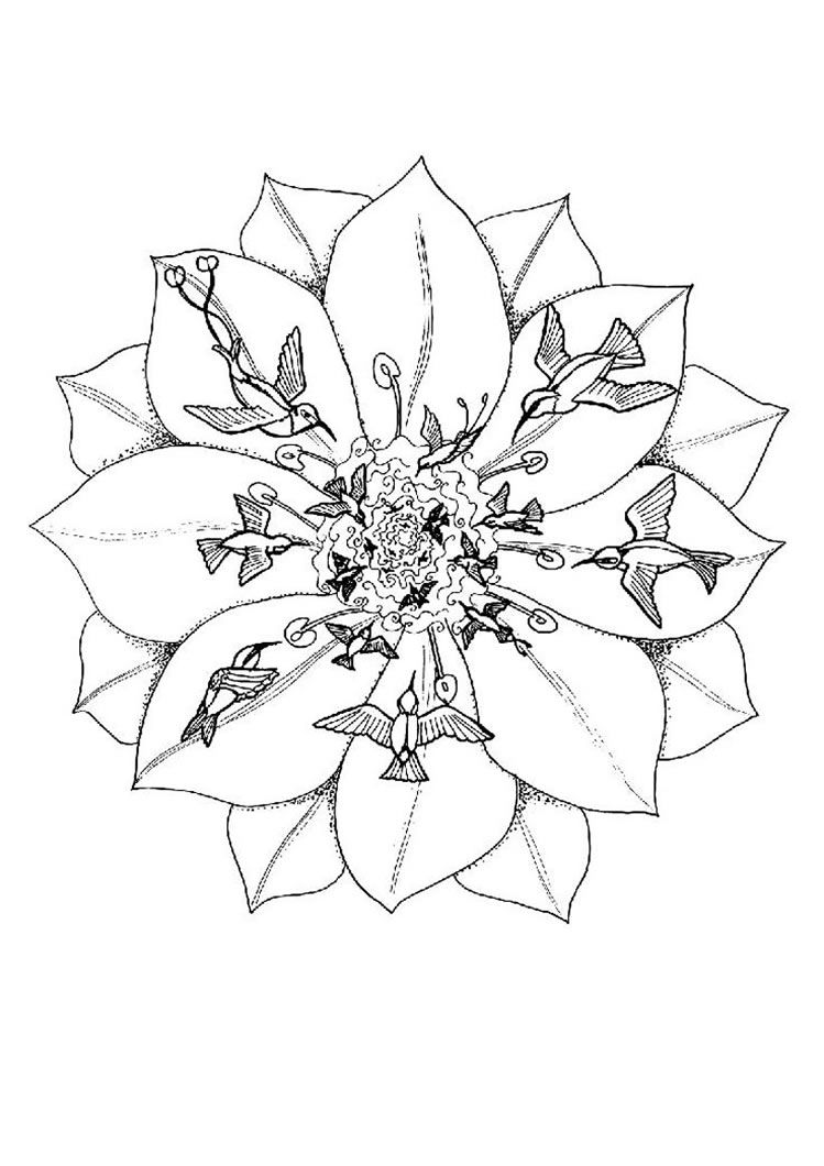 749x1060 Mandalas To Print And Color For Adults Animal Mandalas