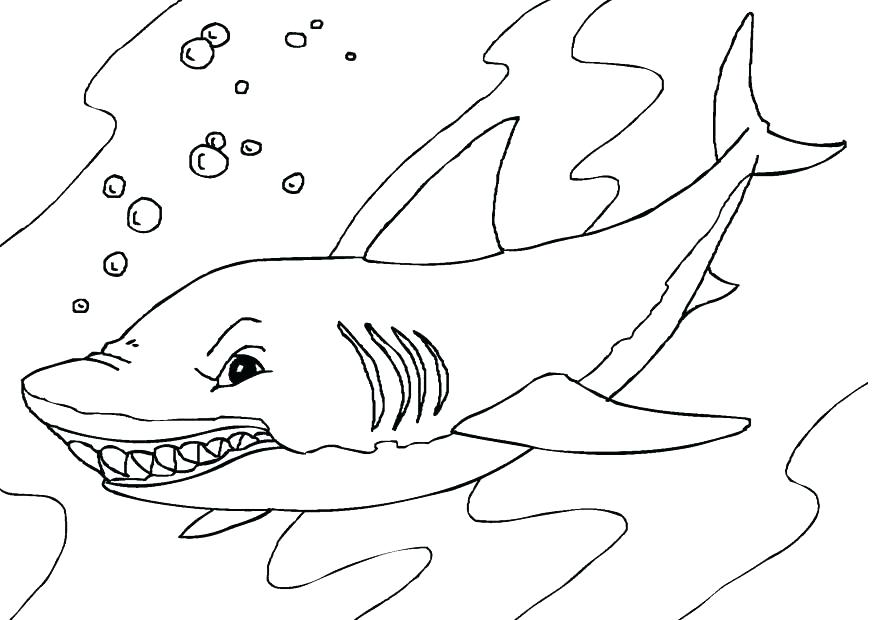 Megalodon Shark Coloring Pages At Getdrawings Com Free For
