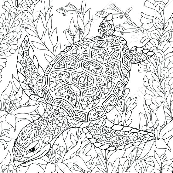 570x570 Animal Coloring Pages For Adults Coloring Pages Coloring Pages