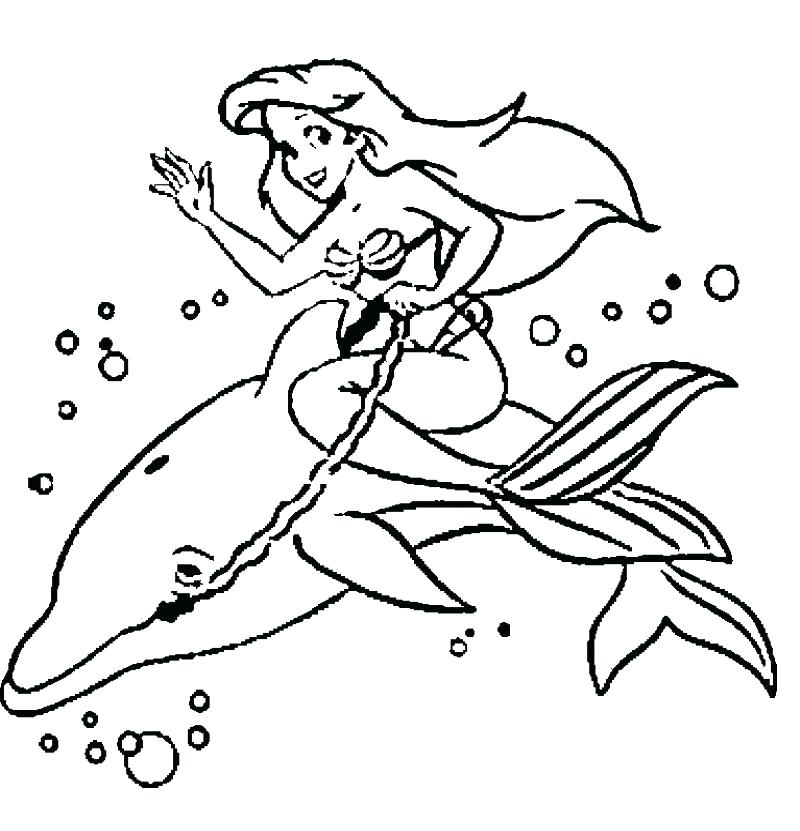 800x831 Dolphin Color Page Dolphin Coloring Pages To Print Out And Mermaid