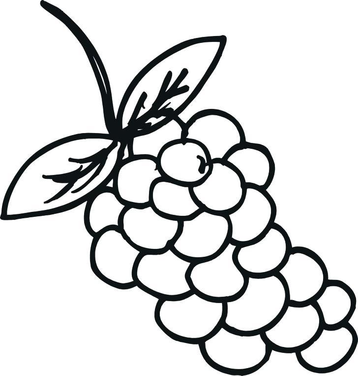 728x763 Food Junk Food Coloring Page Download Print Online Printable