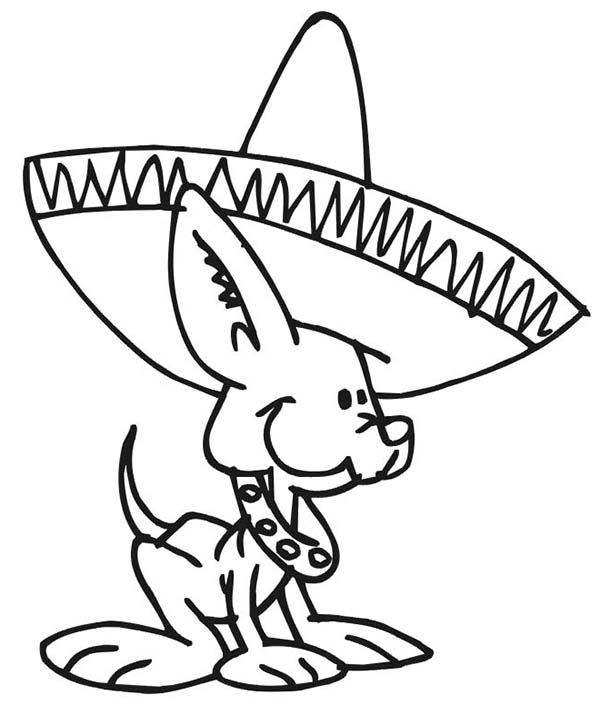 600x705 Cute Little Dog Wearing Mexican Hat Coloring Page Color Luna