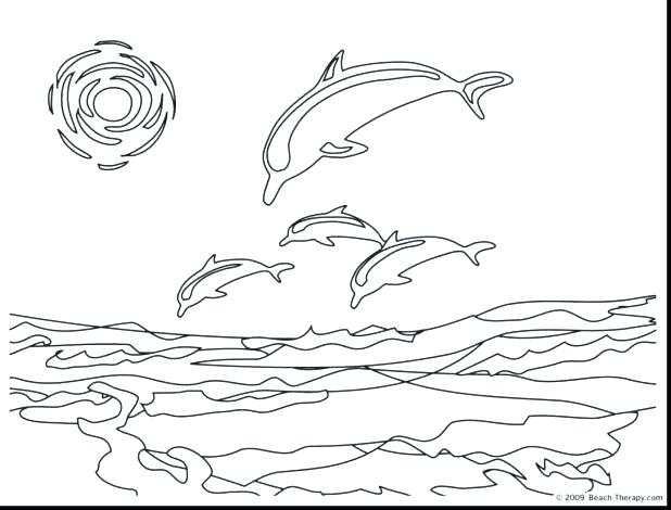 618x470 Free Dolphin Coloring Pages Innovative Dolphin Coloring Pages Book