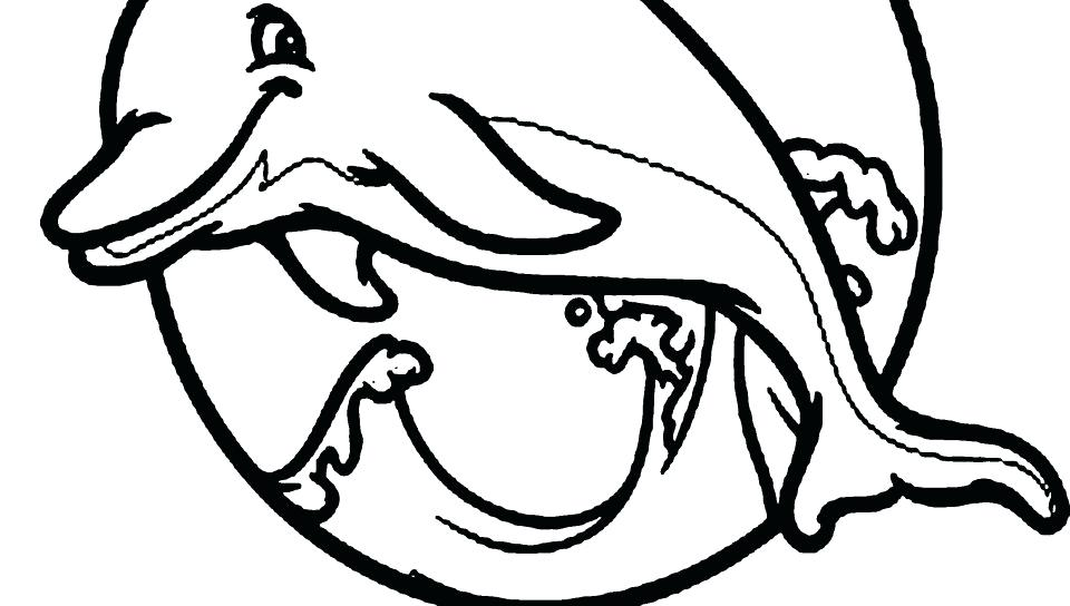 960x544 Miami Dolphin Color Air Max Whales Coloring Pages Dolphins