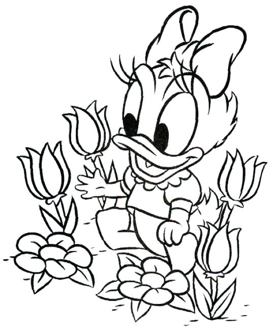 537x650 Mickey Mouse Baby Coloring Pages Disy Baby Mickey Mouse Characters
