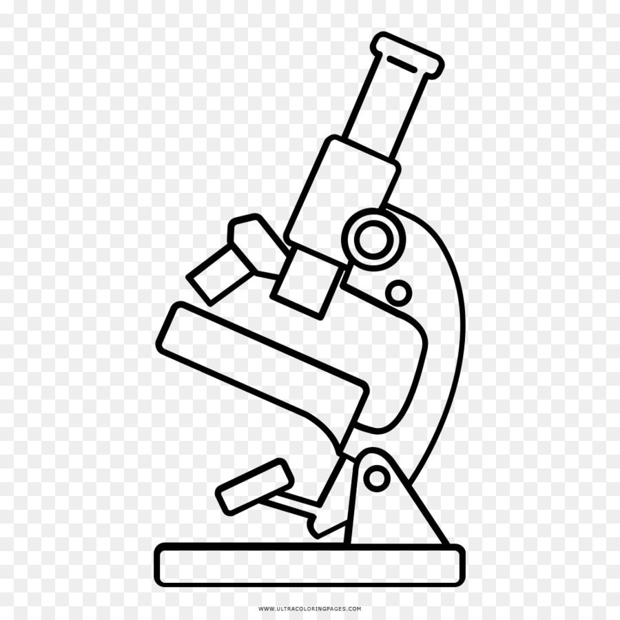 900x900 Drawing Microscope Line Art Coloring Book