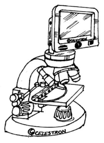 363x500 Lcd Digital Microscope