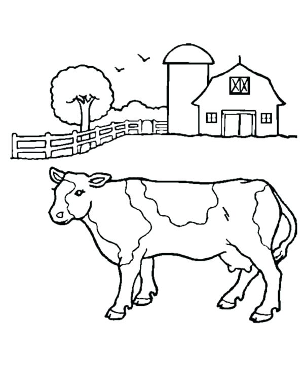 600x734 Milk Coloring Page Milk Cow Coloring Pages Milk Coloring Page Barn