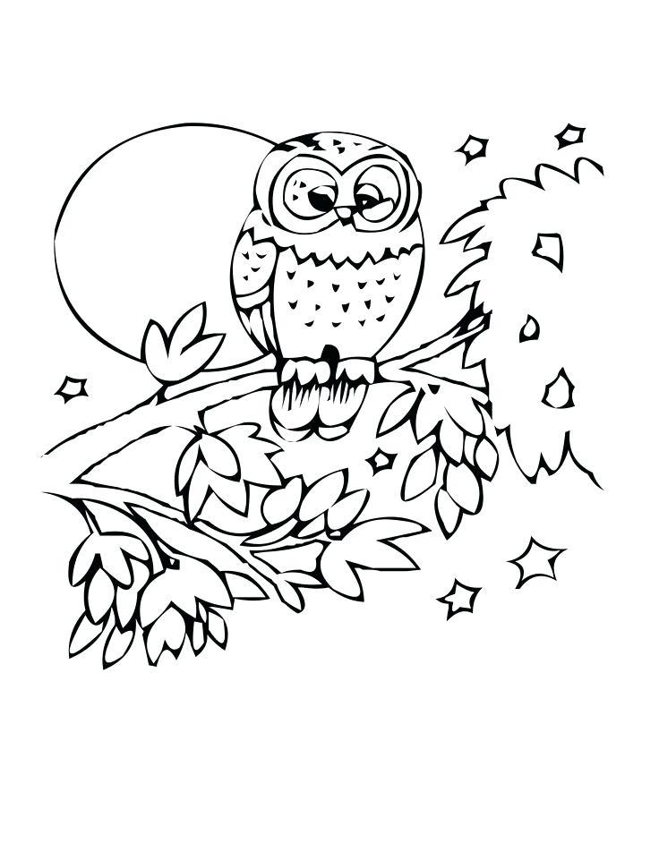 736x952 Charming Milkshake Coloring Pages Owl Coloring Page Bird Milkshake