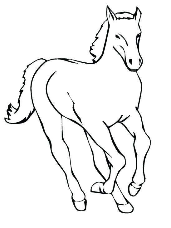 Miniature Horse Coloring Pages At Getdrawings Com Free For