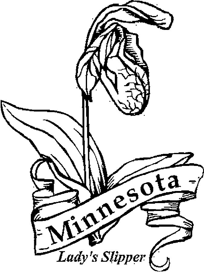 Minnesota Wild Coloring Pages