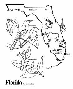 236x288 Mississippi Coloring Pages To Print