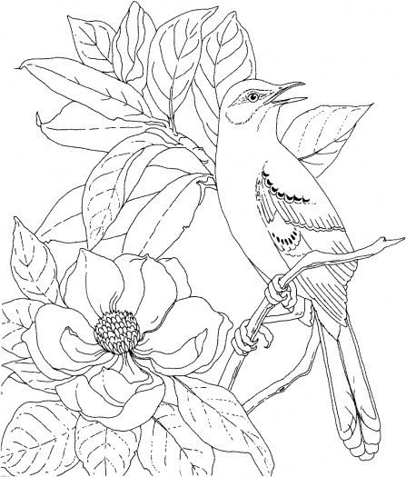 Mississippi State University Coloring Pages