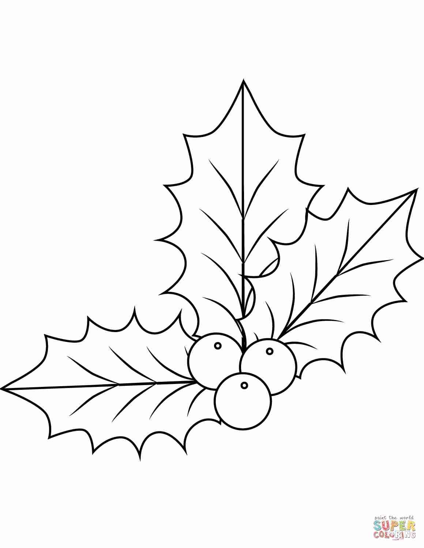 1159x1500 Mistletoe Coloring Page Olegratiy