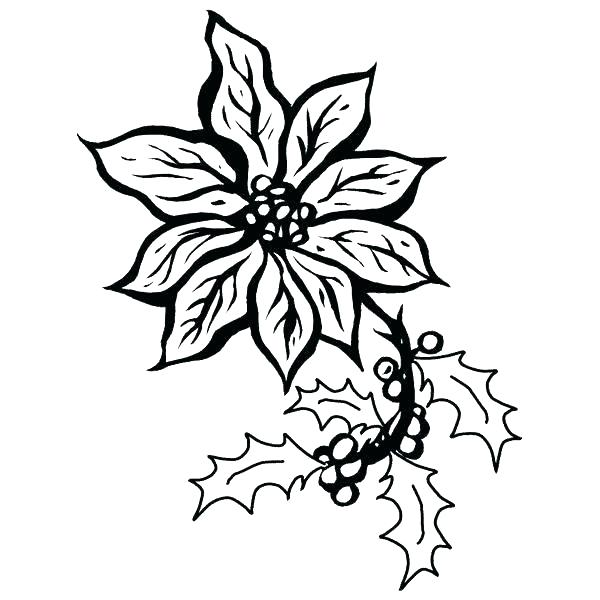 600x600 Mistletoe Coloring Page Medium Size Of Ornament Coloring Pages