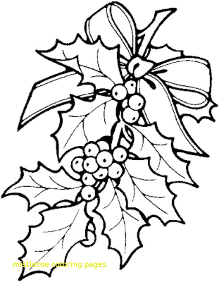 700x900 Mistletoe Coloring Pages Mistletoe