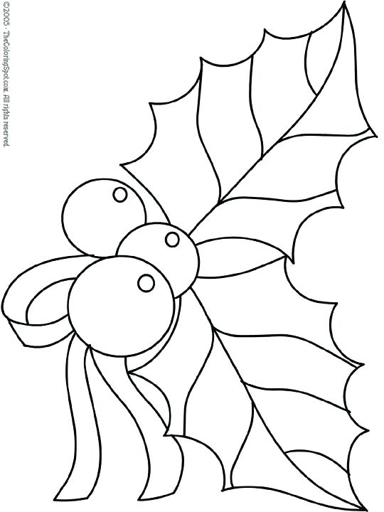 540x720 Mistletoe Coloring Pages Mistletoe Coloring Pages Holly Coloring