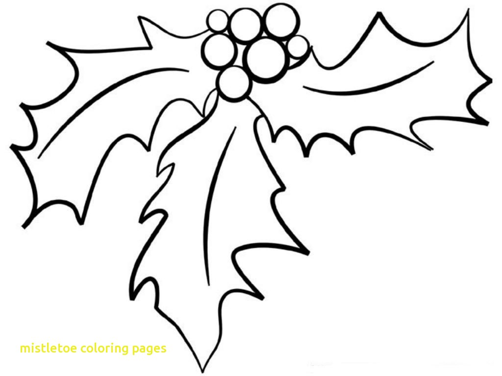1024x768 Mistletoe Coloring Pages With Christmas Holly Best