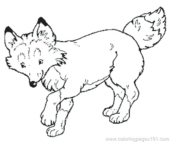 567x476 The Mitten Coloring Page The Mitten Coloring Page The Mitten Mural