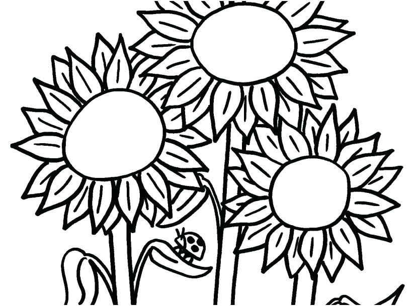 827x609 Modern Art Coloring Pages Coloring Page Flowers Farm Signs Modern
