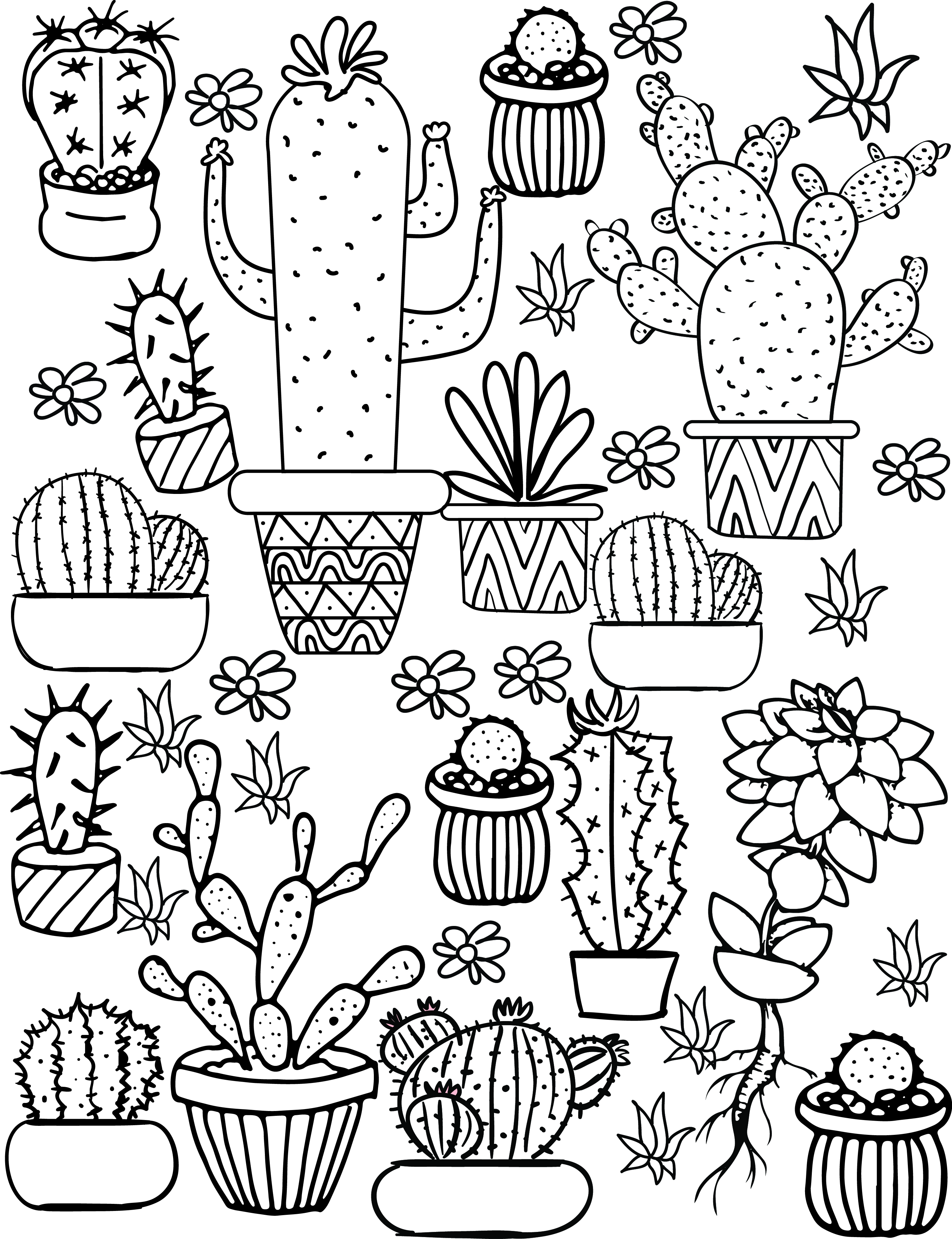 2954x3843 Cactus And Succulent Printable Adult Coloring Pages