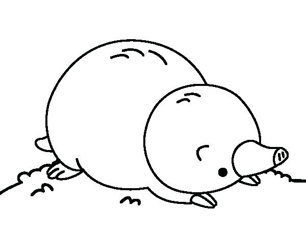 600x470 Mole Coloring Page Mole Lying Down Coloring Page Mole Colouring