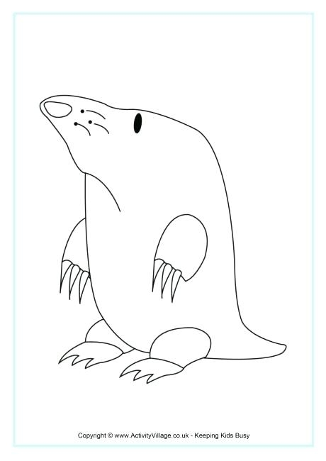 460x650 Mole Day Coloring Pages