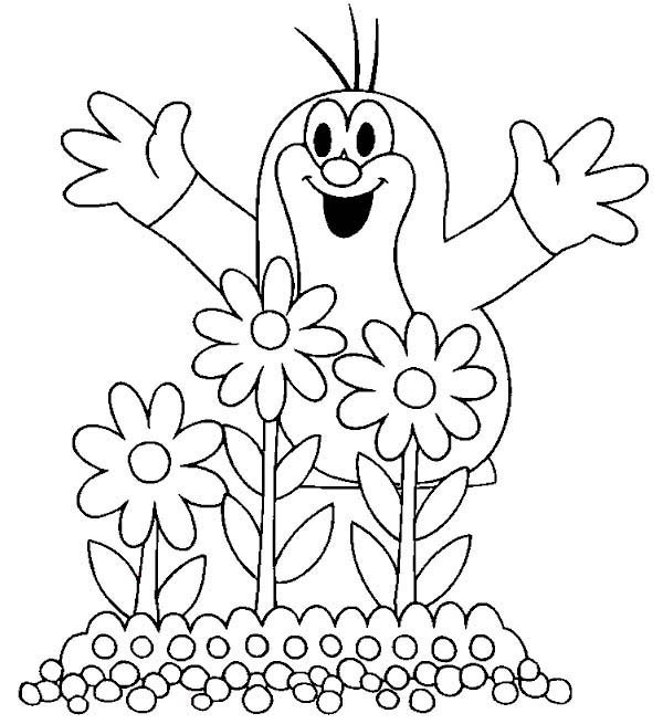 600x655 Mole Plant Beautiful Flowers Coloring Pages Batch Coloring