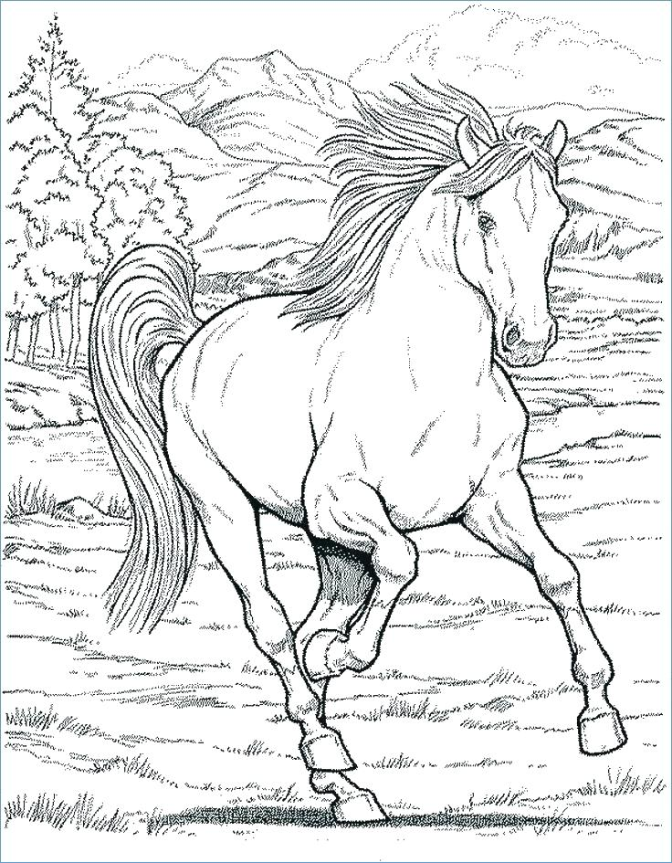 Mom And Baby Horse Coloring Pages at GetDrawings.com   Free ...
