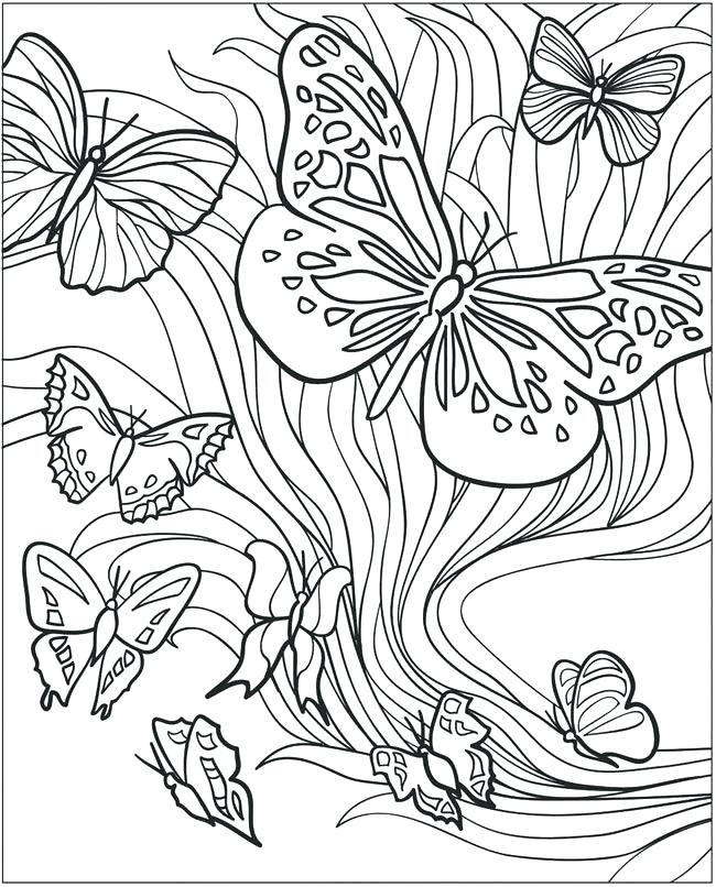 650x806 Butterflies Coloring Pages Free Printable Butterfly Coloring Pages