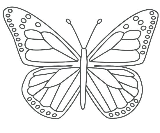 550x456 Butterfly Printable Printable Butterfly Coloring Pages Butterfly