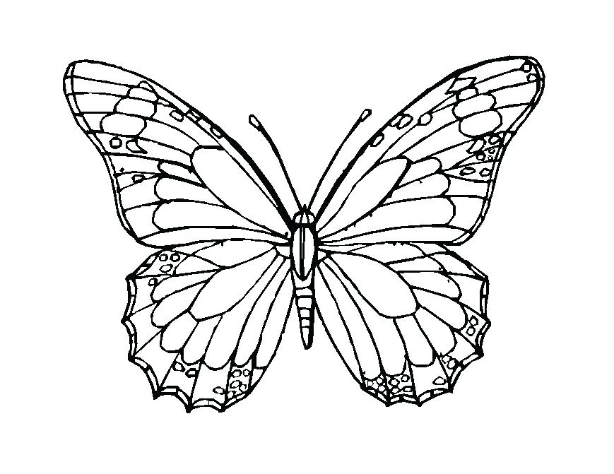 869x671 Delivered Monarch Butterfly Coloring Page Book Pages To Print