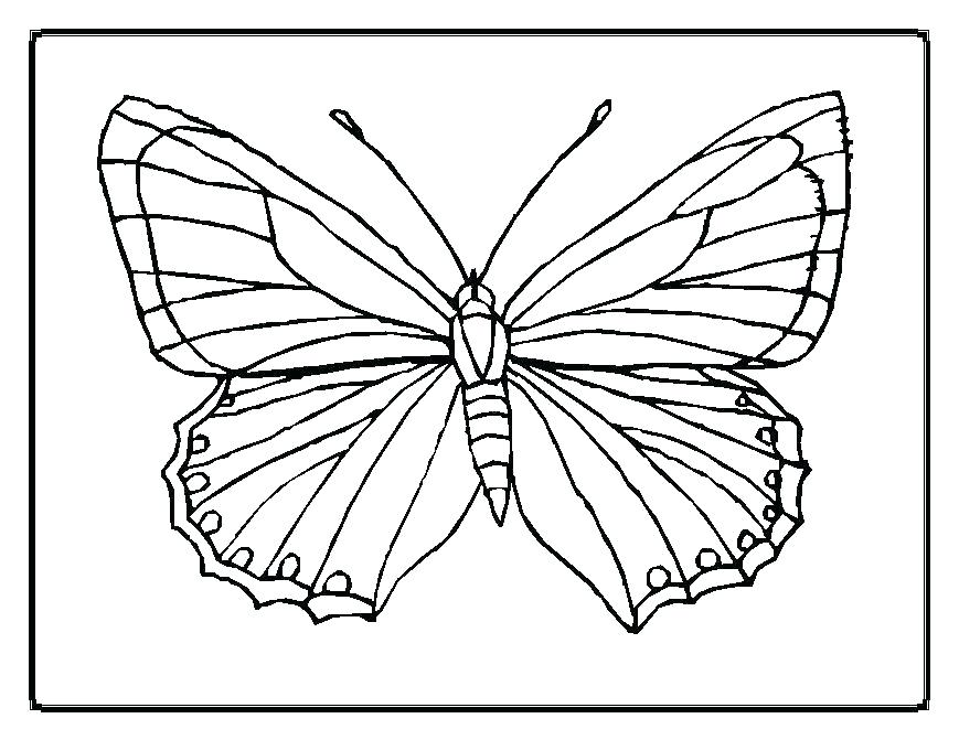 869x671 Butterfly Color Page Monarch Butterfly Life Cycle Coloring Page