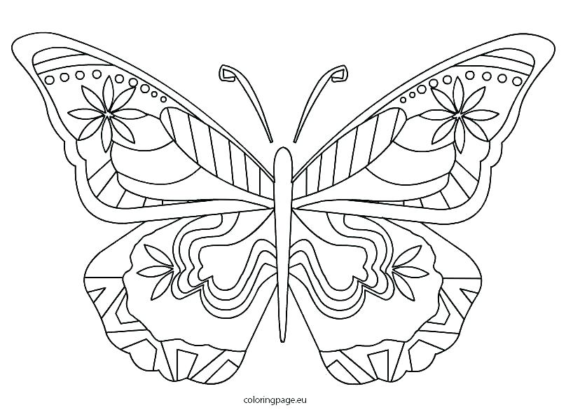 808x595 Monarch Butterfly Coloring Pages Butterfly Color Pages Monarch