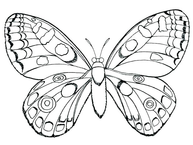 618x464 Monarch Butterfly Coloring Pages Butterfly Coloring Pages To Print