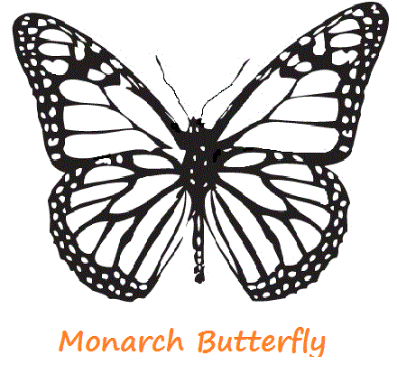 440x404 Monarch Butterfly Template Printable Coloring Page