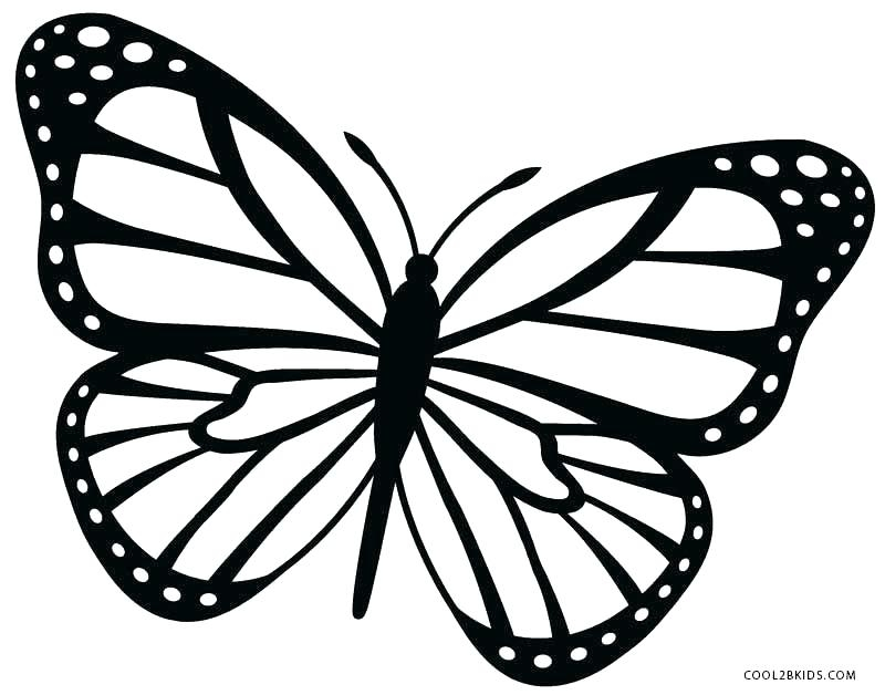 800x628 Butterfly Coloring Page Printable Caterpillar Coloring Pages