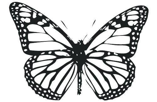 500x325 Monarch Butterfly Coloring Page Inspirational Butterfly Printable
