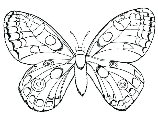618x464 Butterfly Coloring Pages Butterflies Coloring Page Awesome Monarch