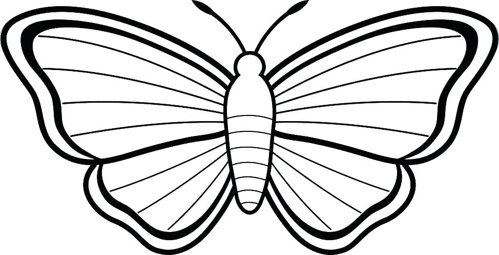 974x499 Butterfly Printable Coloring Pages Monarch Butterfly Coloring