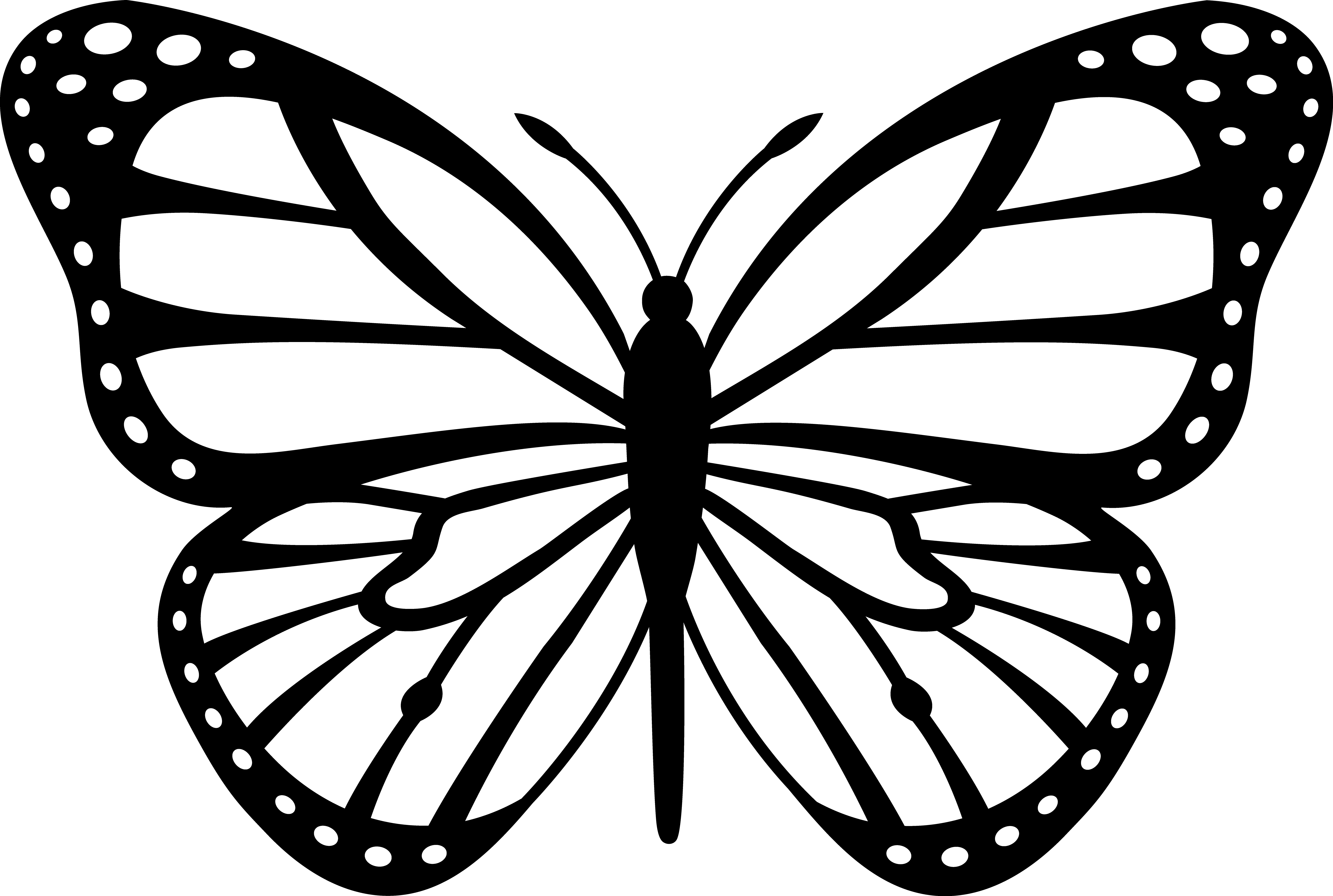 5920x3982 Delivered Monarch Butterfly Coloring Sheet Pag
