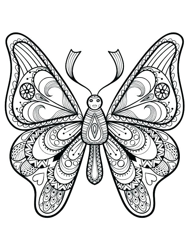 618x816 Free Printable Butterfly Coloring Pages For Adults Images To Color