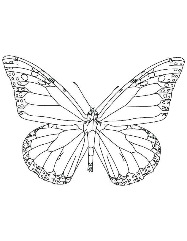 630x810 Free Printable Monarch Butterfly Coloring Pages Beautiful Page O